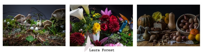 Laura Forest Food Still Life Series 2013